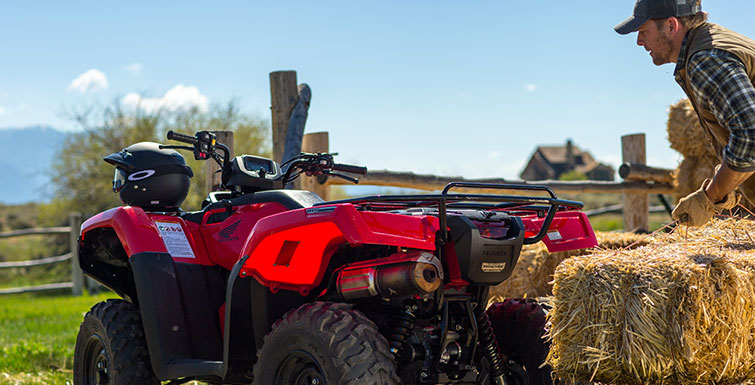 2018 Honda FourTrax Rancher 4x4 in Baldwin, Michigan