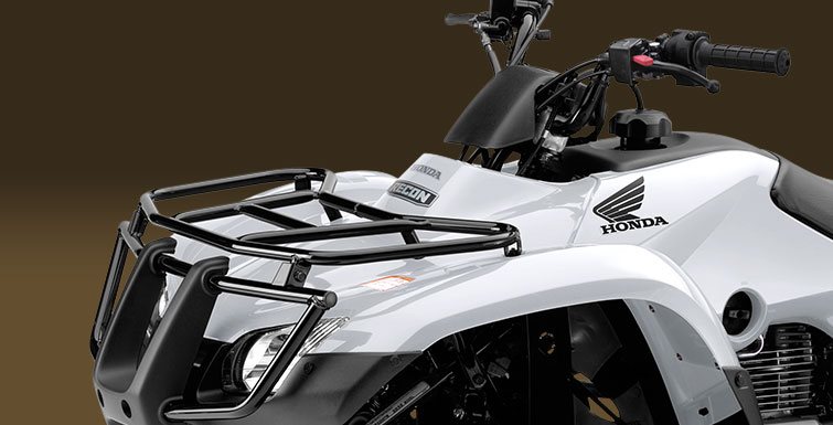 2018 Honda FourTrax Recon in Sterling, Illinois