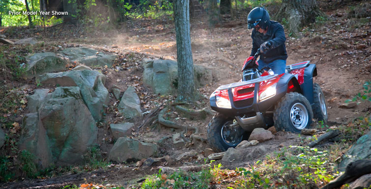 2018 Honda FourTrax Rincon in Huntington Beach, California - Photo 2