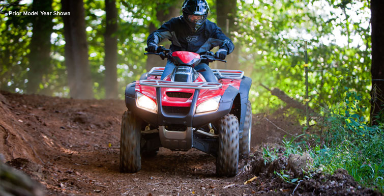 2018 Honda FourTrax Rincon in Huntington Beach, California - Photo 4