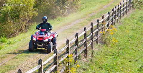 2018 Honda FourTrax Rincon in Northampton, Massachusetts