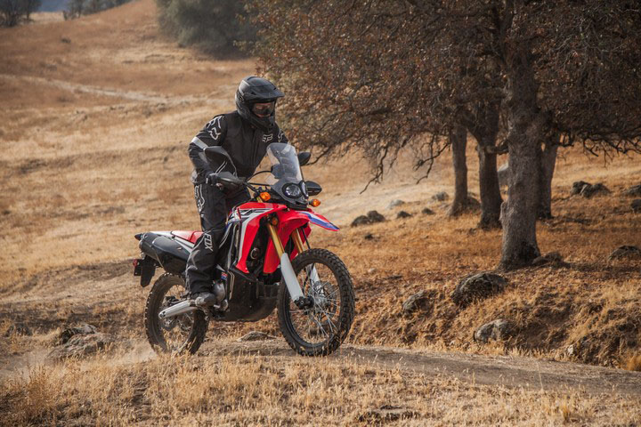 2018 Honda CRF250L Rally ABS in Grass Valley, California