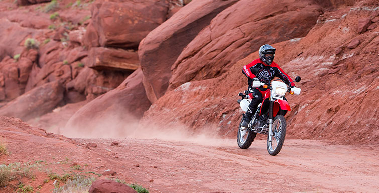 2018 Honda XR650L in Scottsdale, Arizona - Photo 4