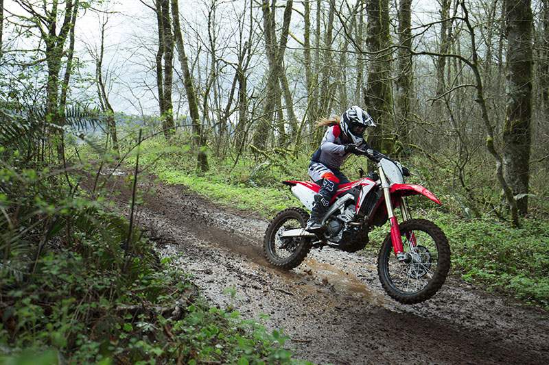 2019 Honda CRF250RX in Hendersonville, North Carolina