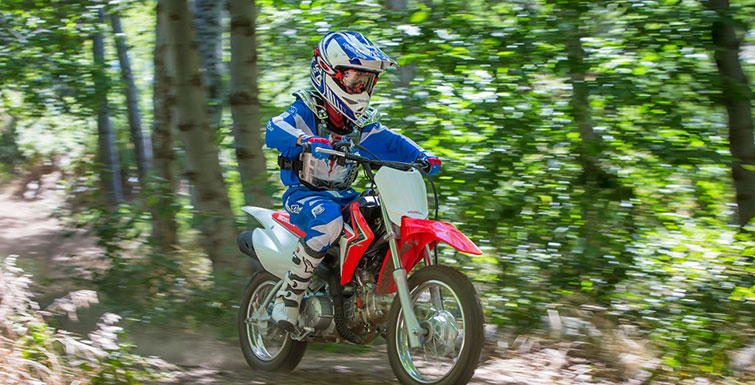 2018 Honda CRF110F in Amherst, Ohio