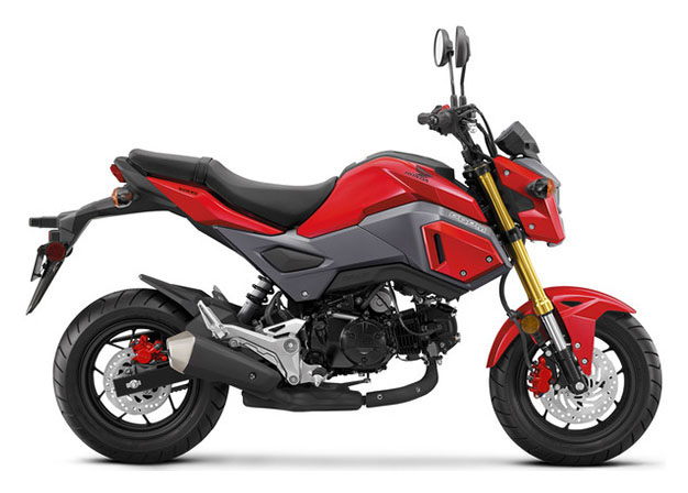 2018 Honda Grom in Adams, Massachusetts - Photo 1