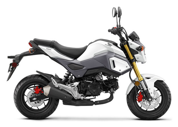 2018 Honda Grom in Amherst, Ohio