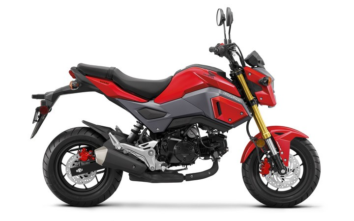 2018 Honda Grom ABS in Paw Paw, Michigan