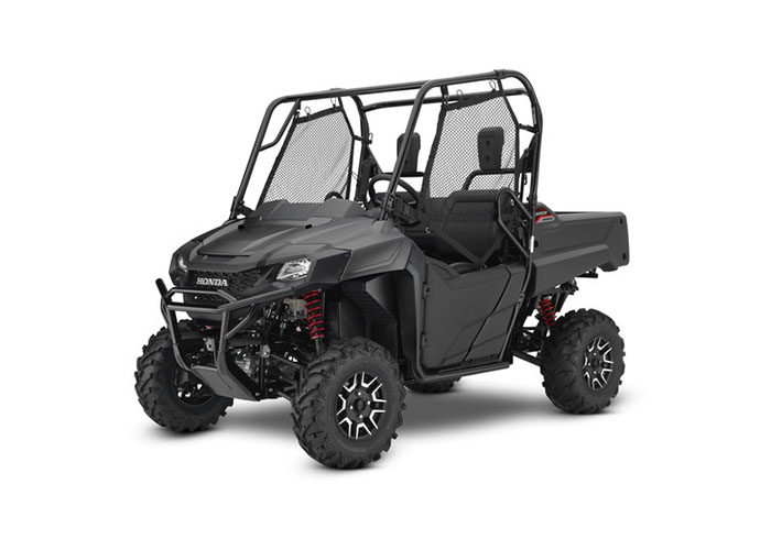2018 Honda Pioneer 700 Deluxe in Long Island City, New York