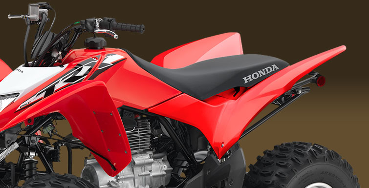 2019 Honda TRX250X in Moline, Illinois - Photo 5
