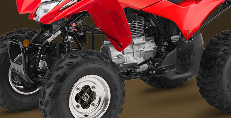 2019 Honda TRX250X in Lapeer, Michigan - Photo 2