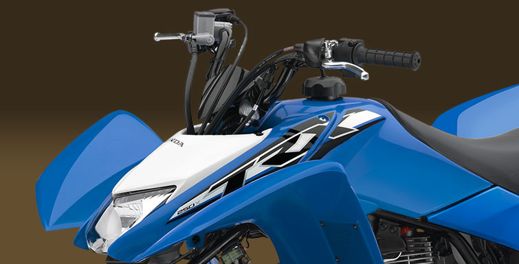 2019 Honda TRX250X in Lapeer, Michigan - Photo 3