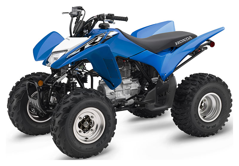 2019 Honda TRX250X in Watseka, Illinois
