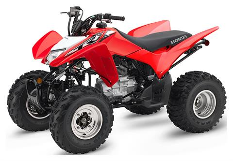 2019 Honda TRX250X in Madera, California