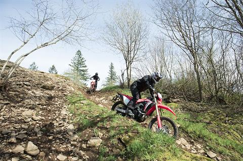 2019 Honda CRF450L in Fairfield, Illinois