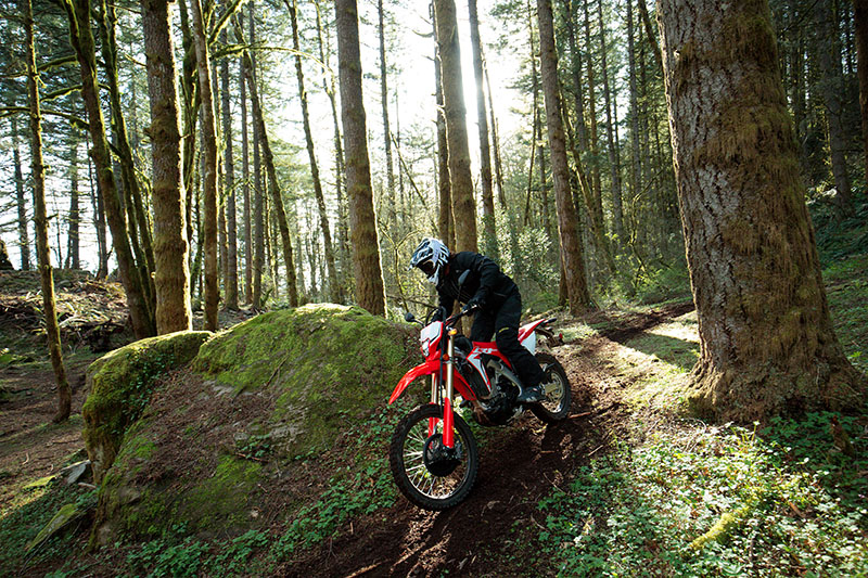 2019 Honda CRF450L in Anchorage, Alaska - Photo 3
