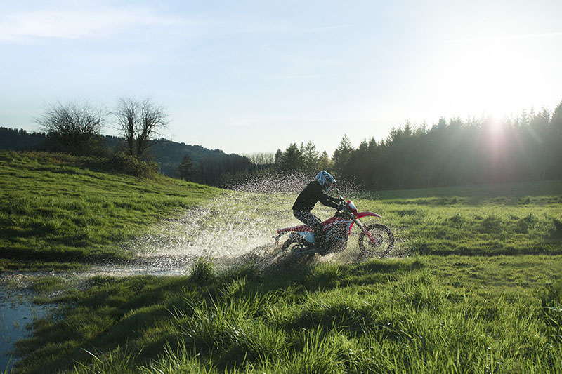 2019 Honda CRF450L in Lakeport, California