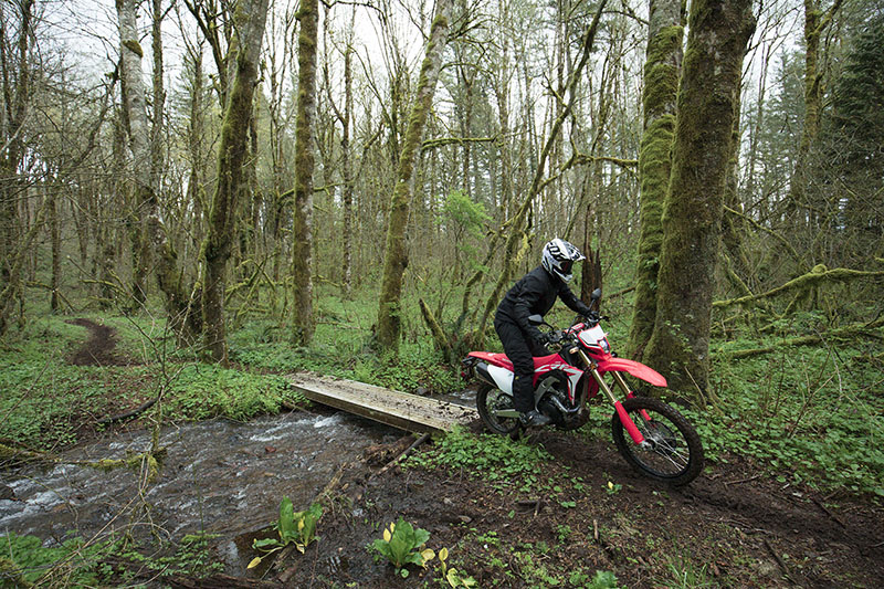2019 Honda CRF450L in Redding, California - Photo 7