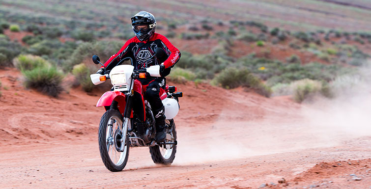 2019 Honda XR650L in Hollister, California