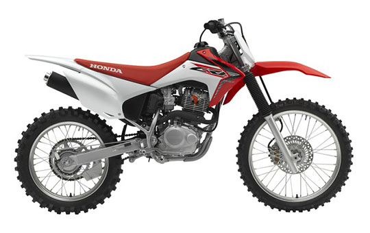 2019 Honda CRF230F in Massillon, Ohio