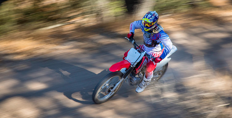 2019 Honda CRF230F in Augusta, Maine