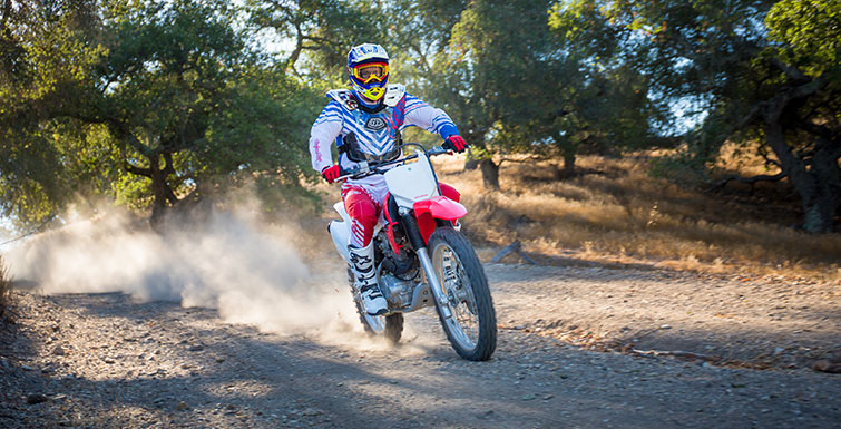 2019 Honda CRF230F in Baldwin, Michigan