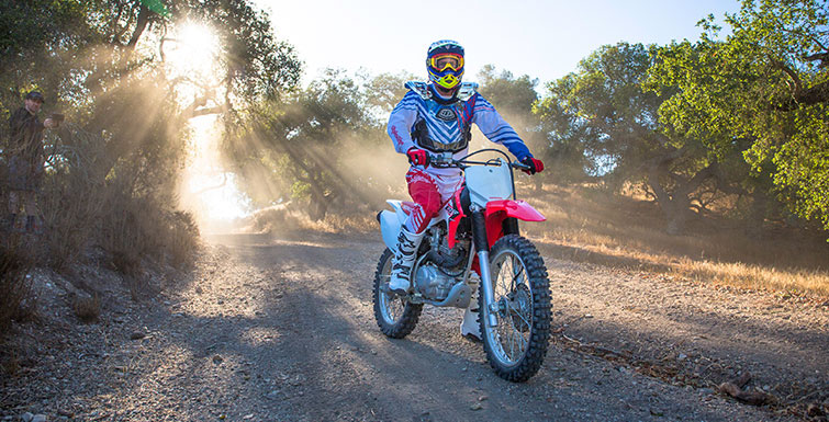 2019 Honda CRF230F in Littleton, New Hampshire
