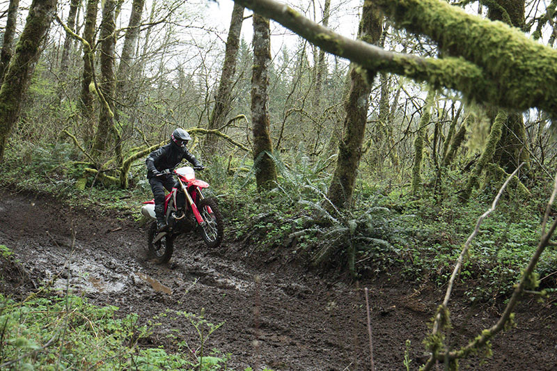 2019 Honda CRF450X in Albany, Oregon