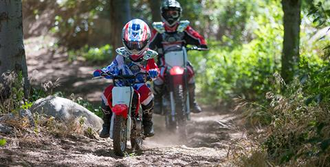 2019 Honda CRF50F in Oak Creek, Wisconsin - Photo 6