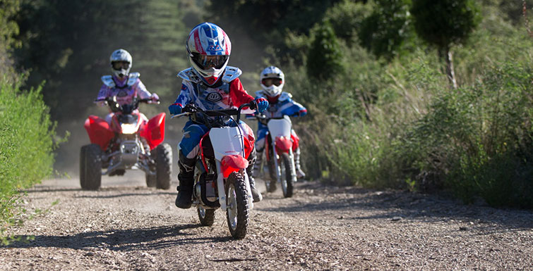 2019 Honda CRF50F in Monroe, Michigan