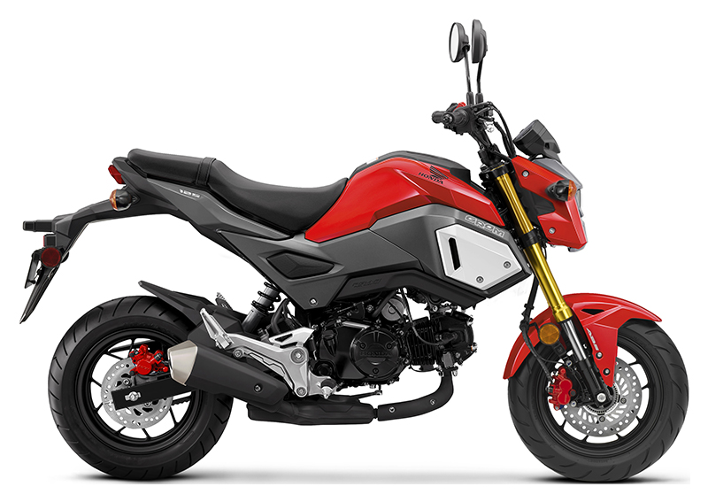 2019 Honda Grom in Hot Springs National Park, Arkansas
