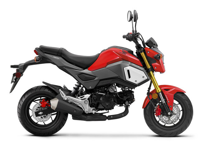 2019 Honda Grom ABS in Baldwin, Michigan