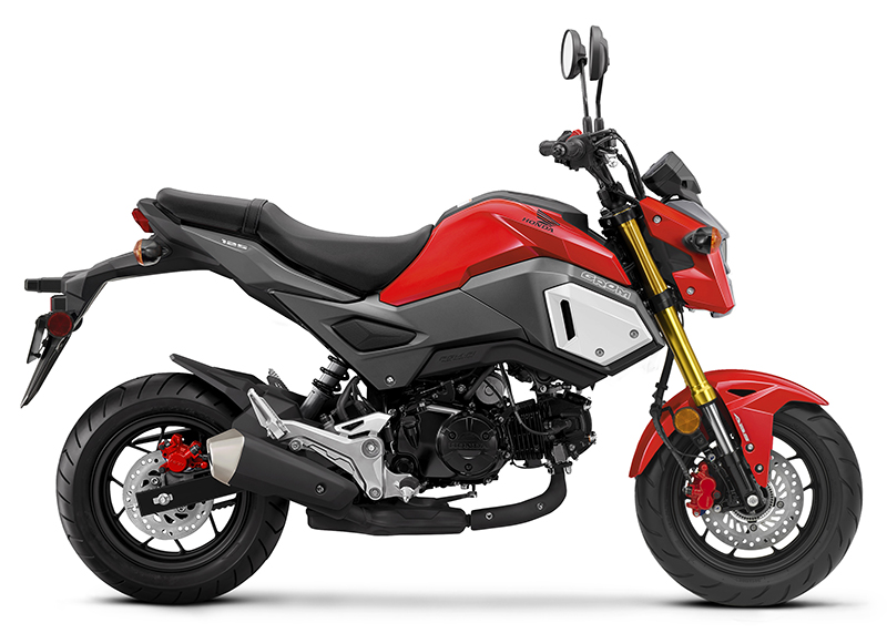 2019 Honda Grom ABS in Adams, Massachusetts