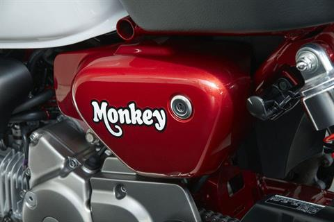 2019 Honda Monkey in Lakeport, California