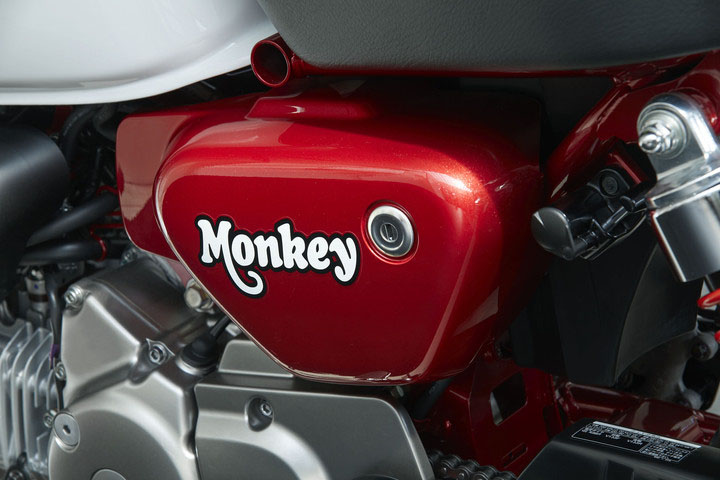 2019 Honda Monkey ABS in Monroe, Michigan - Photo 9