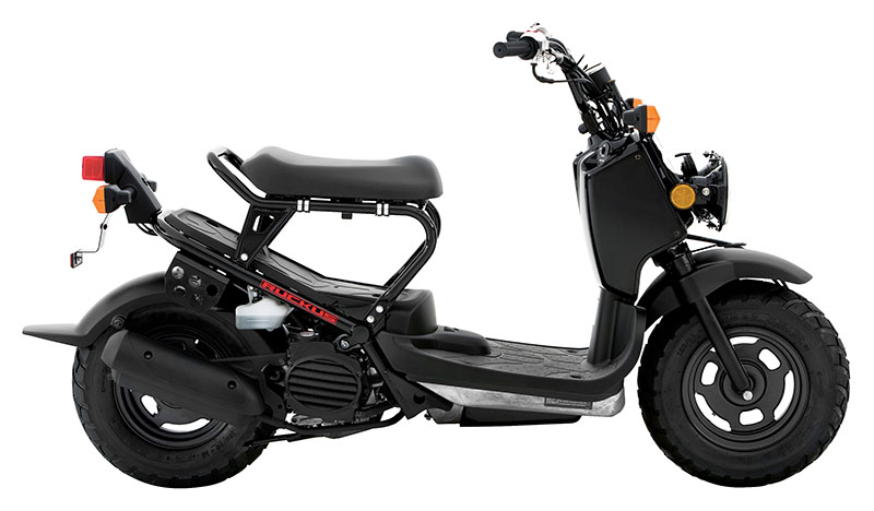 2019 Honda Ruckus in Danbury, Connecticut