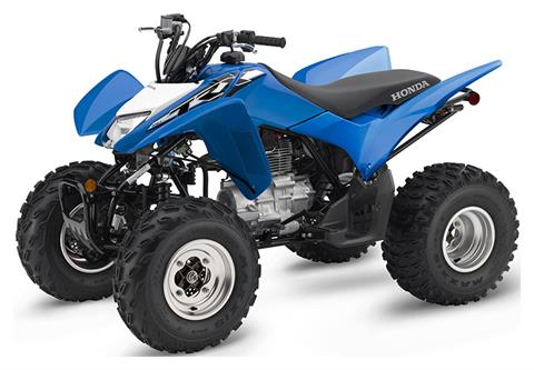 2020 Honda TRX250X in Chico, California