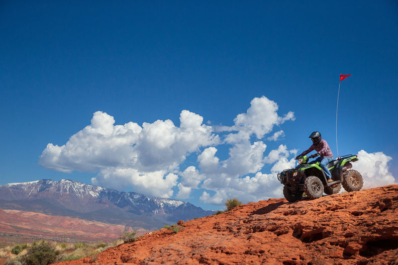 2020 Honda FourTrax Foreman Rubicon 4x4 Automatic DCT in Scottsdale, Arizona - Photo 12