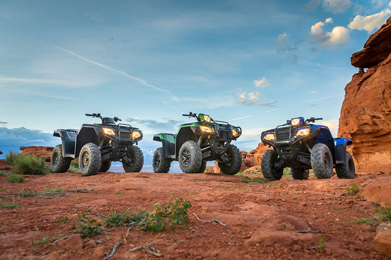 2020 Honda FourTrax Foreman Rubicon 4x4 Automatic DCT EPS in Warsaw, Indiana - Photo 17