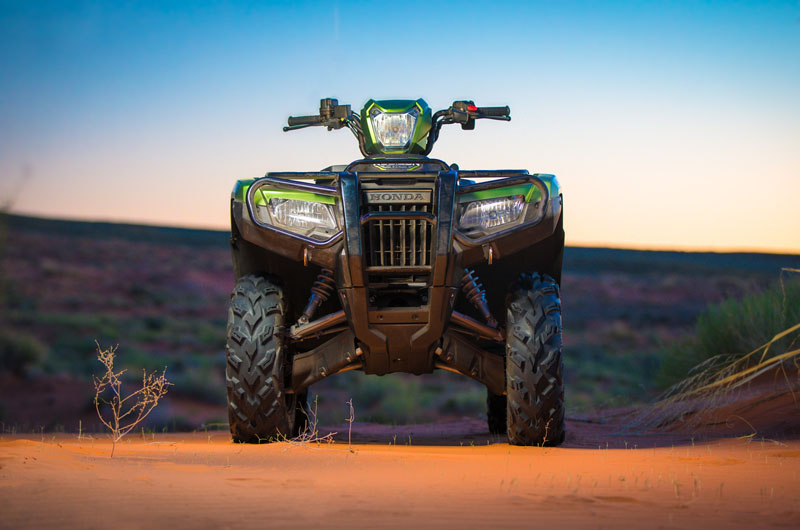 2020 Honda FourTrax Foreman Rubicon 4x4 Automatic DCT EPS Deluxe in Clovis, New Mexico - Photo 14