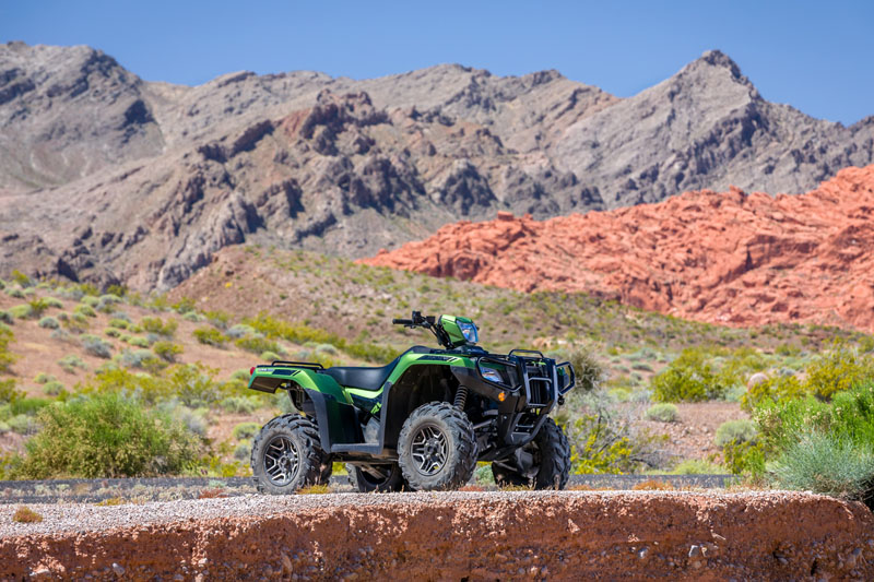 2020 Honda FourTrax Foreman Rubicon 4x4 Automatic DCT EPS Deluxe in Shawnee, Kansas - Photo 15