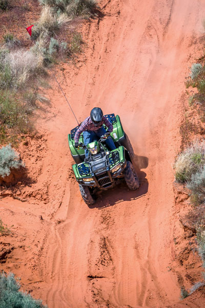 2020 Honda FourTrax Foreman Rubicon 4x4 Automatic DCT EPS Deluxe in Clovis, New Mexico - Photo 17