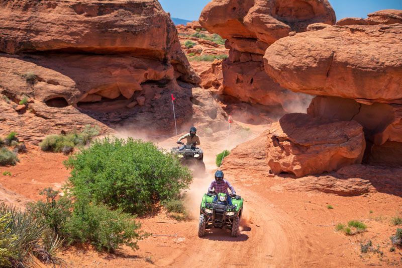 2020 Honda FourTrax Foreman Rubicon 4x4 Automatic DCT EPS Deluxe in Saint George, Utah - Photo 12