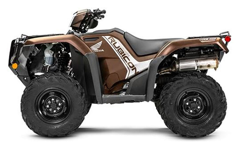 2020 Honda FourTrax Foreman Rubicon 4x4 EPS in Hollister, California - Photo 4