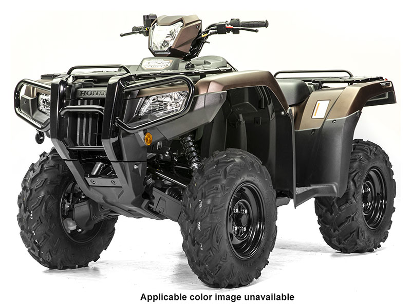 2020 Honda FourTrax Foreman Rubicon 4x4 EPS in Ontario, California