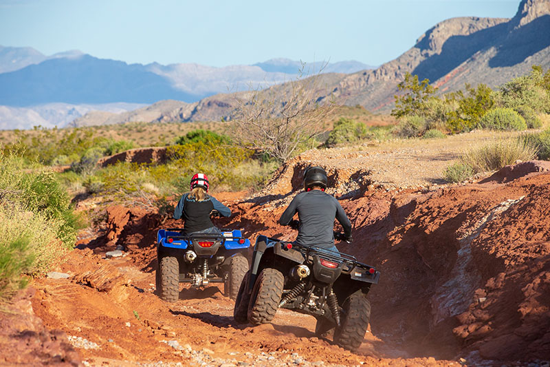 2020 Honda FourTrax Rancher 4x4 Automatic DCT IRS EPS in Hollister, California - Photo 4