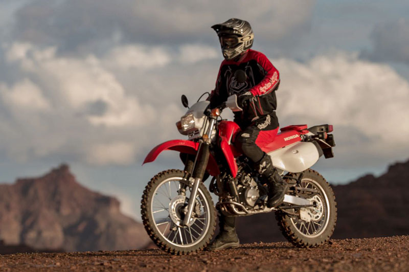 2020 Honda XR650L in Grass Valley, California - Photo 2