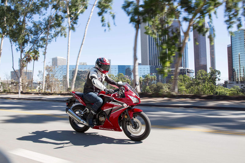2020 Honda CBR300R ABS in Fremont, California - Photo 2