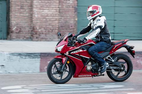 2020 Honda CBR300R ABS in Fremont, California - Photo 5