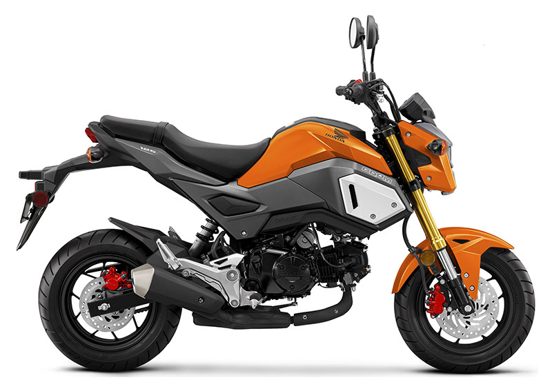 2020 Honda Grom in Baldwin, Michigan